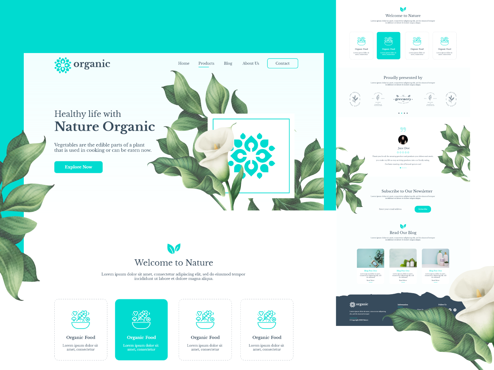 Organic Natural Website Adobe XD Template